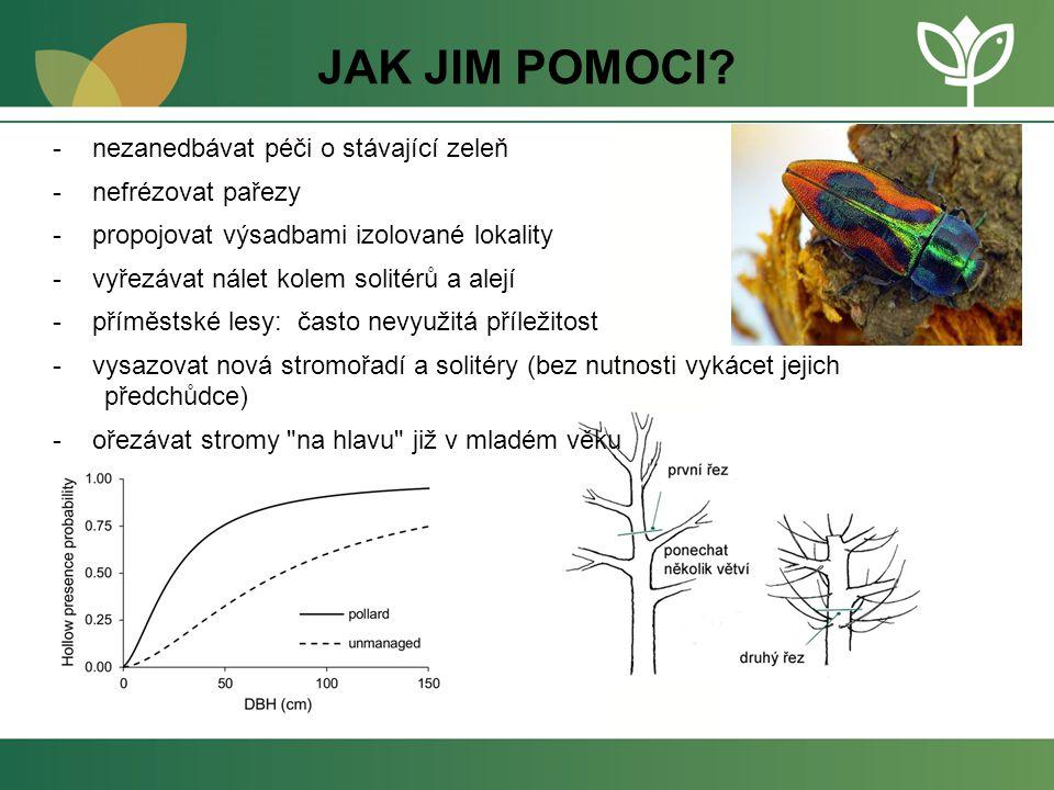 JAK JIM POMOCI? -nezanedbávat péči o stávající zeleň -nefrézovat pařezy -propojovat výsadbami izolované lokality -vyřezávat nálet kolem solitérů a ale