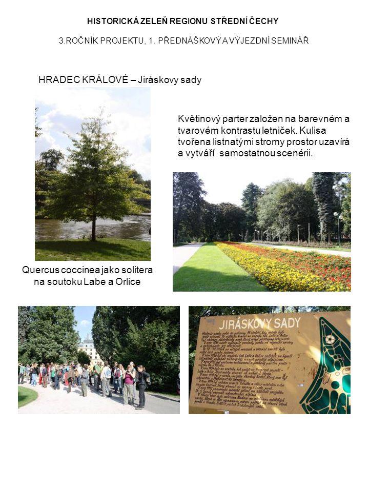 HISTORICKÁ ZELEŇ REGIONU STŘEDNÍ ČECHY 3.ROČNÍK PROJEKTU, 1. PŘEDNÁŠKOVÝ A VÝJEZDNÍ SEMINÁŘ HRADEC KRÁLOVÉ – Jiráskovy sady Quercus coccinea jako soli