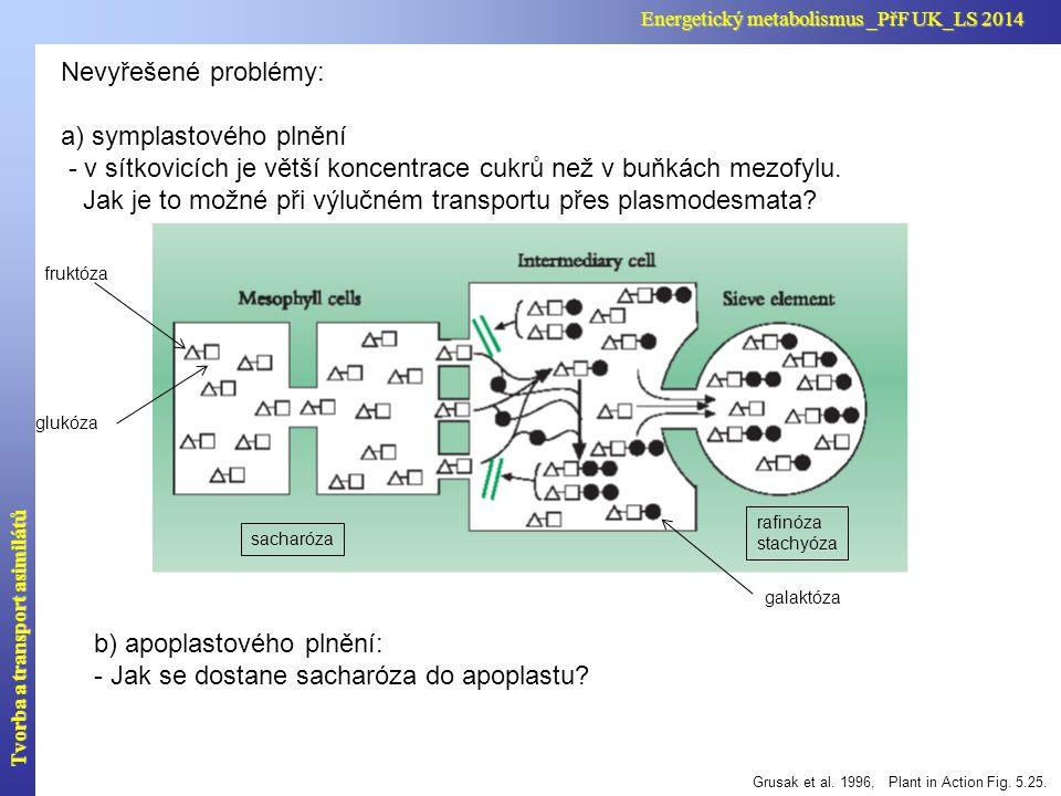 Nevyřešené problémy: a) symplastového plnění - v sítkovicích je větší koncentrace cukrů než v buňkách mezofylu. Jak je to možné při výlučném transport