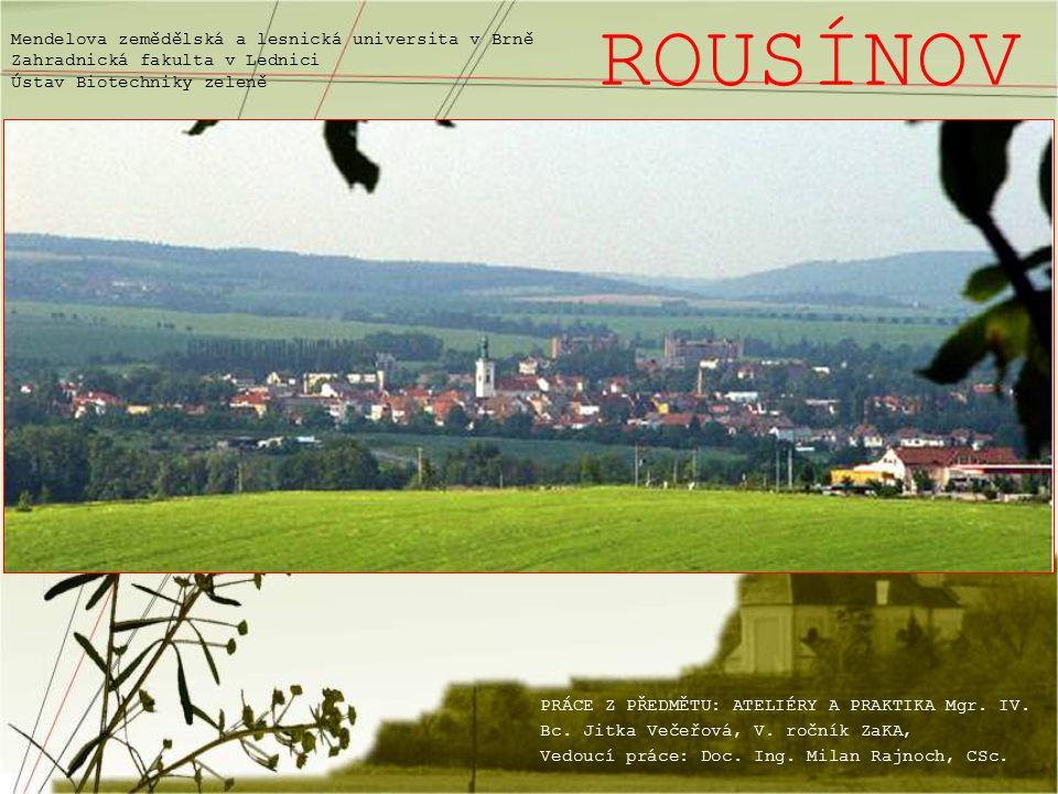 Město Rousínov leží na úpatí jihovýchodní okrajové části Drahanské vrchoviny v údolí na pravém břehu potoka Rakovce cca 7 km na sever od Slavkova, 25 km východně od Brna na státní silnici z Brna do Olomouce, na 216.