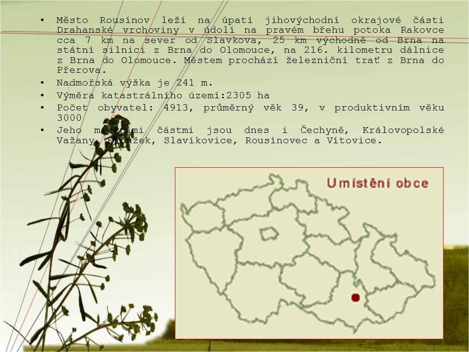 Město Rousínov leží na úpatí jihovýchodní okrajové části Drahanské vrchoviny v údolí na pravém břehu potoka Rakovce cca 7 km na sever od Slavkova, 25