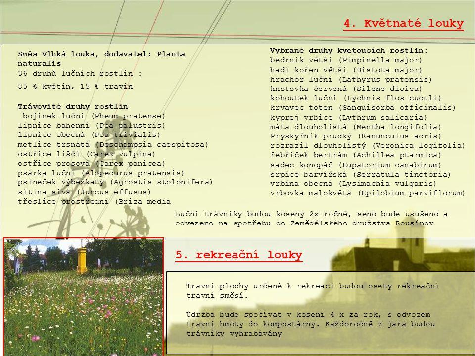 4. Květnaté louky Vybrané druhy kvetoucích rostlin: bedrník větší (Pimpinella major) hadí kořen větší (Bistota major) hrachor luční (Lathyrus pratensi