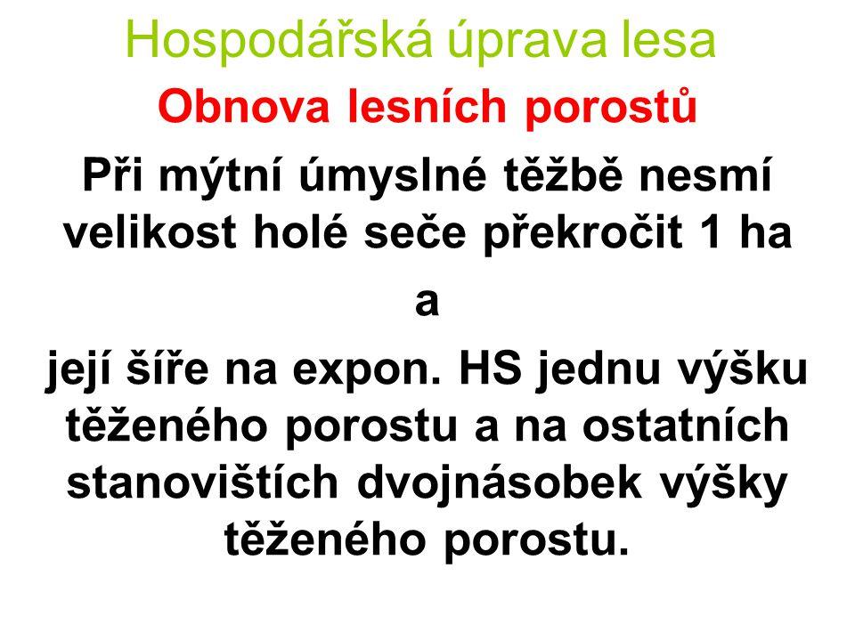 Hospodářská úprava lesa Obnova lesních porostů Šířka holé seče není omezena při domýcení porostních zbytků a porostů o souvislé výměře menší než 1 ha.