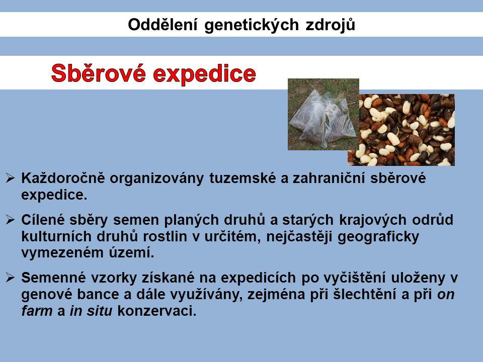 Oddělení genetických zdrojů  Každoročně organizovány tuzemské a zahraniční sběrové expedice.