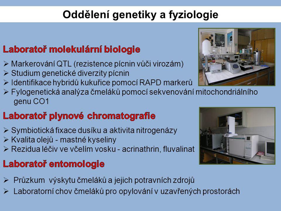 Oddělení genetiky a fyziologie