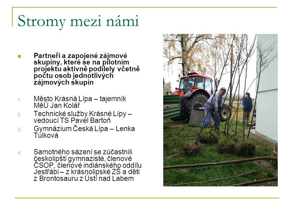 Stromy mezi námi tiskové zprávy Sázením stromů oslaví Den stromů Krásná Lípa (okr.