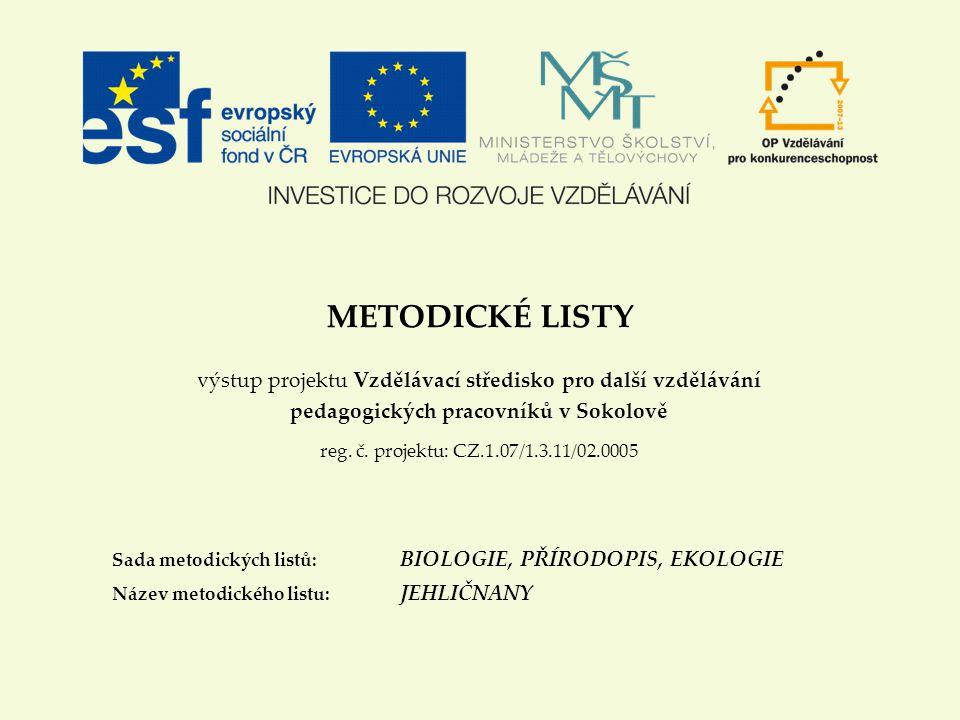 METODICKÉ LISTY výstup projektu Vzdělávací středisko pro další vzdělávání pedagogických pracovníků v Sokolově reg.