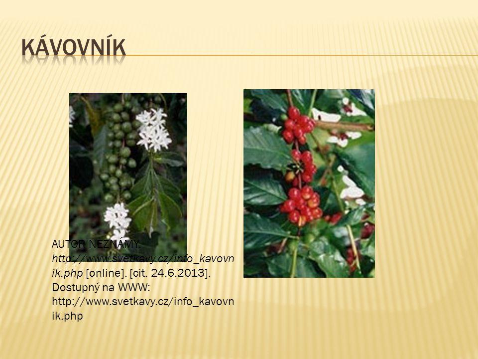  Je známo přes 80 odrůd kávy, ale pouze Coffea arabica a Coffea robusta mají hospodářský význam.