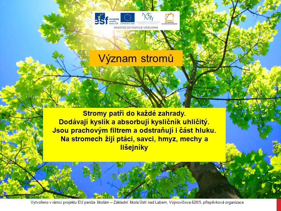 Význam stromů Stromy patří do každé zahrady. Dodávají kyslík a absorbují kysličník uhličitý. Jsou prachovým filtrem a odstraňují i část hluku. Na stro