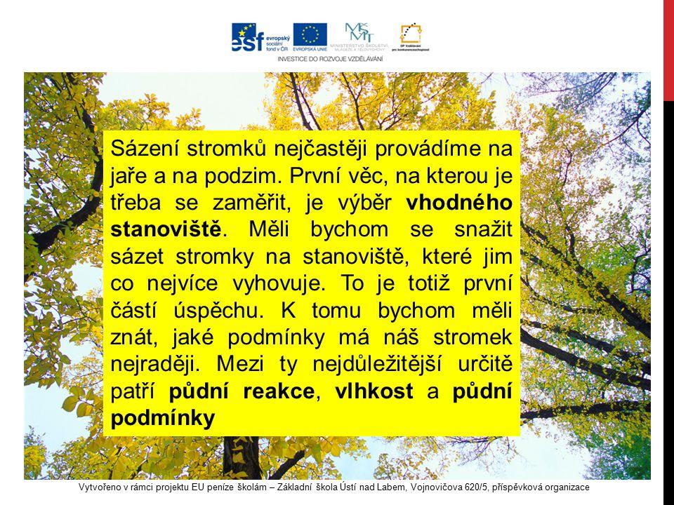 Vytvořeno v rámci projektu EU peníze školám – Základní škola Ústí nad Labem, Vojnovičova 620/5, příspěvková organizace Sázení stromků nejčastěji prová