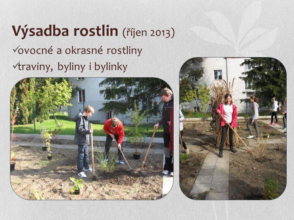 Výsadba rostlin (říjen 2013) ovocné a okrasné rostliny traviny, byliny i bylinky