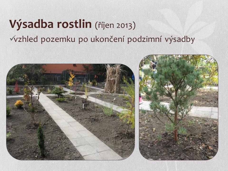 Výsadba rostlin (říjen 2013) vzhled pozemku po ukončení podzimní výsadby