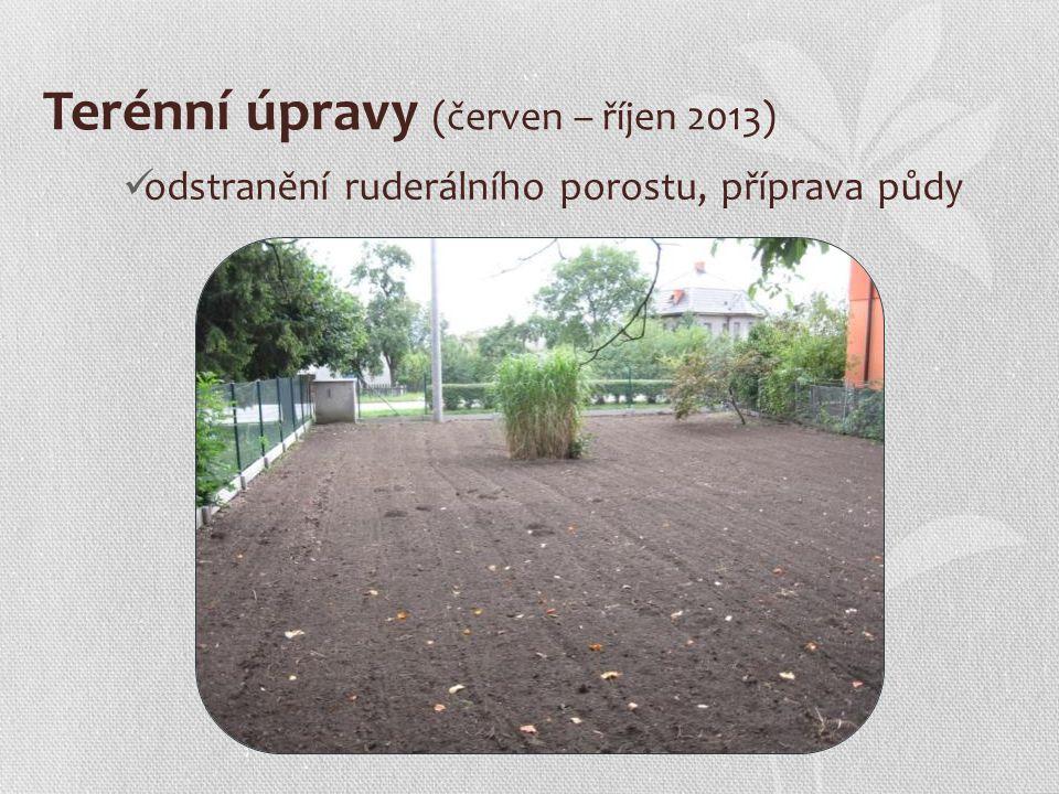 Terénní úpravy (červen – říjen 2013) odstranění ruderálního porostu, příprava půdy