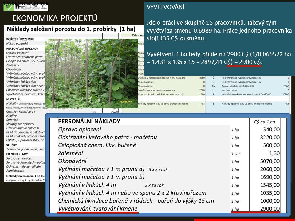 EKONOMIKA PROJEKTŮ Výroba sazenic ve školce VYVĚTVOVÁNÍ Jde o práci ve skupině 15 pracovníků. Takový tým vyvětví za směnu 0,6989 ha. Práce jednoho pra