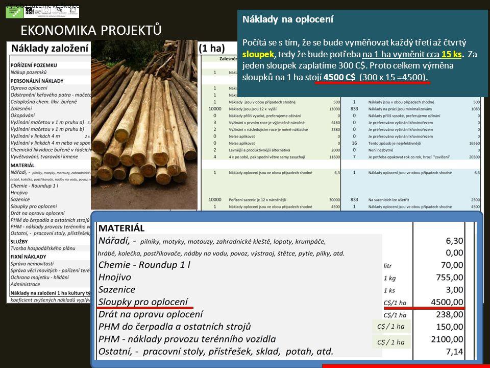 EKONOMIKA PROJEKTŮ Výroba sazenic ve školce Náklady na oplocení Počítá se s tím, že se bude vyměňovat každý třetí až čtvrtý sloupek, tedy že bude potřeba na 1 ha vyměnit cca 15 ks.
