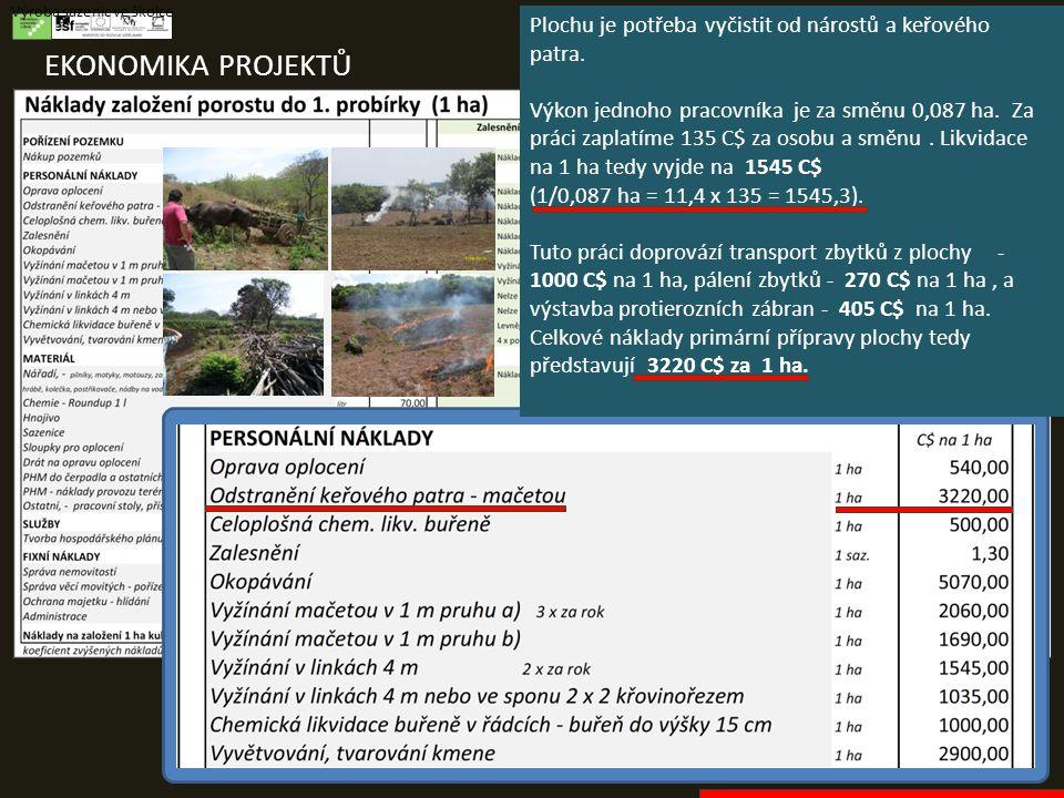 EKONOMIKA PROJEKTŮ Výroba sazenic ve školce Plochu je potřeba vyčistit od nárostů a keřového patra. Výkon jednoho pracovníka je za směnu 0,087 ha. Za
