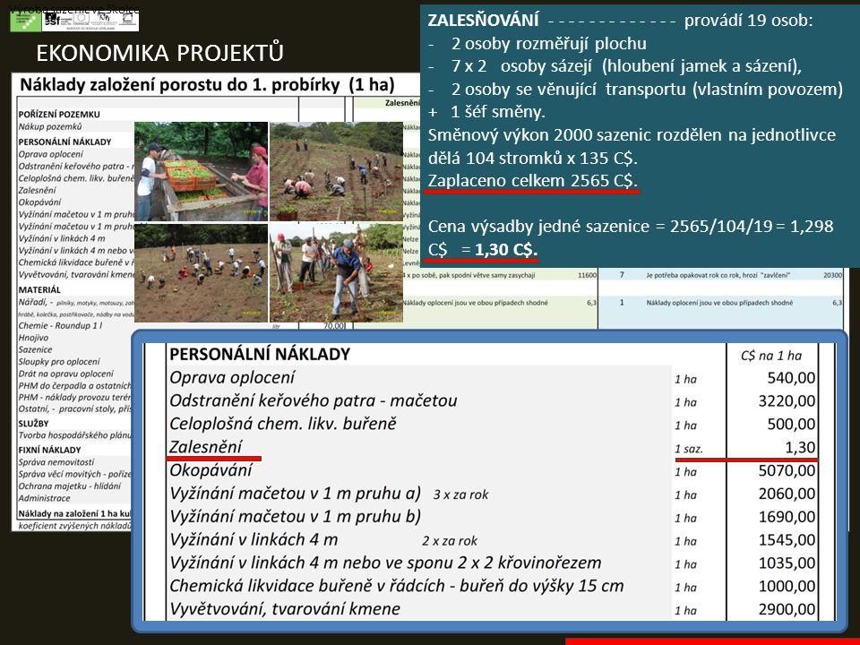 EKONOMIKA PROJEKTŮ Výroba sazenic ve školce ZALESŇOVÁNÍ - - - - - - - - - - - - - provádí 19 osob: - 2 osoby rozměřují plochu - 7 x 2 osoby sázejí (hloubení jamek a sázení), - 2 osoby se věnující transportu (vlastním povozem) + 1 šéf směny.