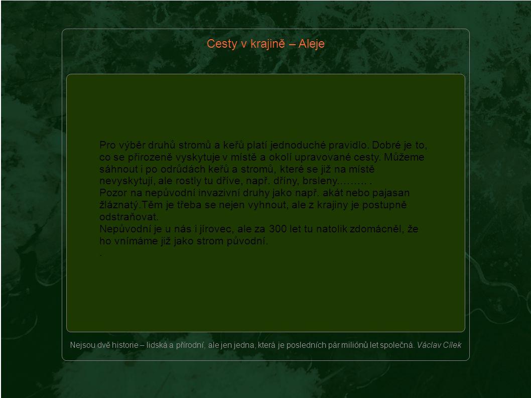 Pro výběr druhů stromů a keřů platí jednoduché pravidlo.