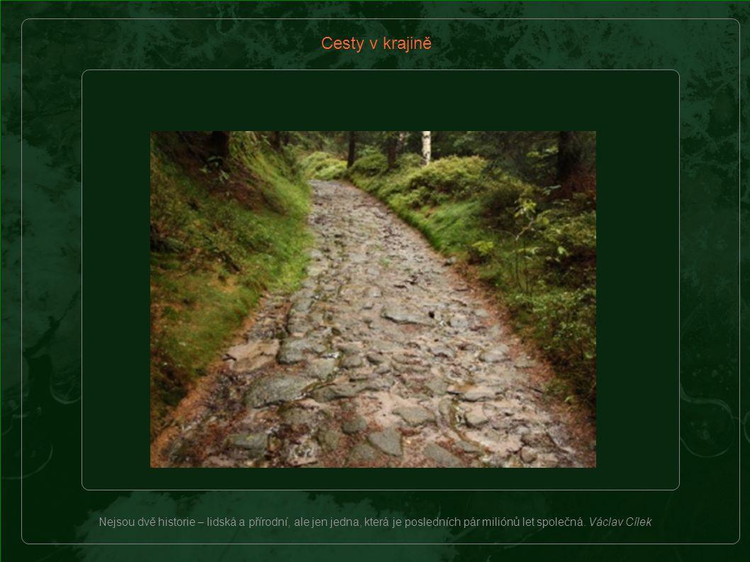 Cesty v krajině Nejsou dvě historie – lidská a přírodní, ale jen jedna, která je posledních pár miliónů let společná.