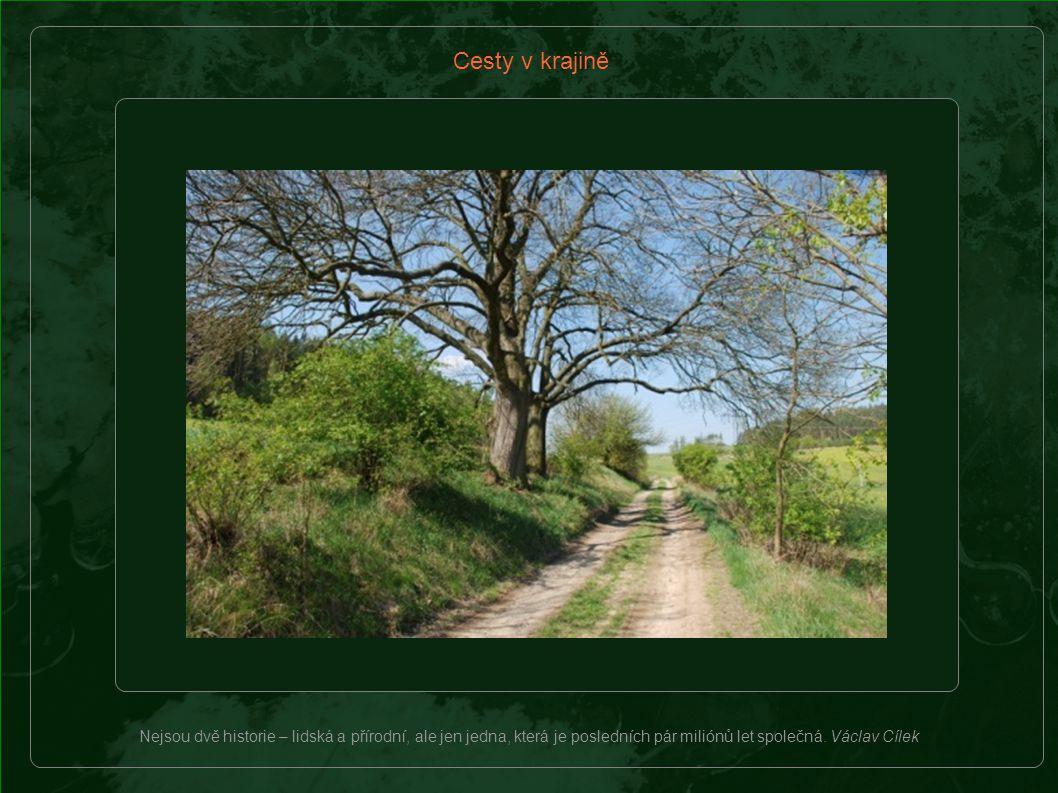 Cesty v krajině bývají mlatové, štěrkové, travnaté, štětové, kamenné i nezpevněné.