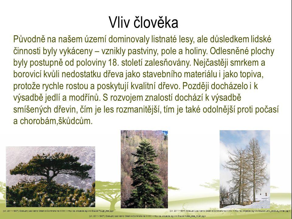 Vliv člověka Původně na našem území dominovaly listnaté lesy, ale důsledkem lidské činnosti byly vykáceny – vznikly pastviny, pole a holiny. Odlesněné