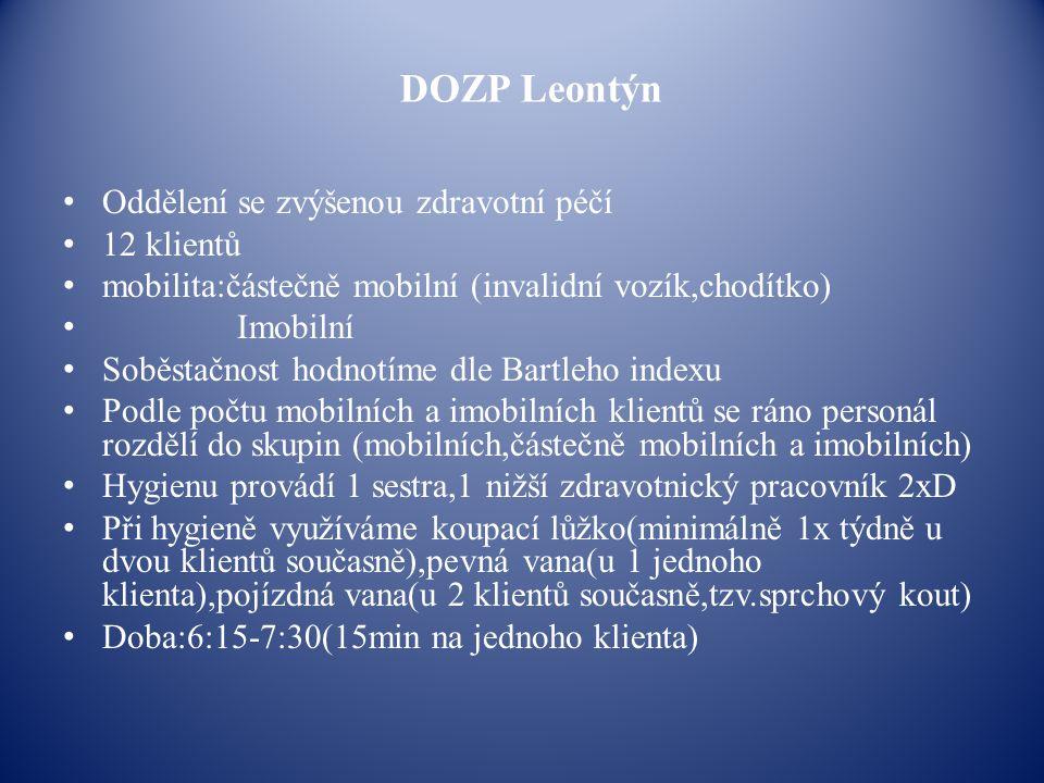 DOZP Leontýn Oddělení se zvýšenou zdravotní péčí 12 klientů mobilita:částečně mobilní (invalidní vozík,chodítko) Imobilní Soběstačnost hodnotíme dle B