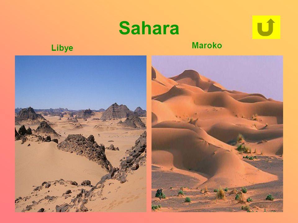 Sahara Libye Maroko