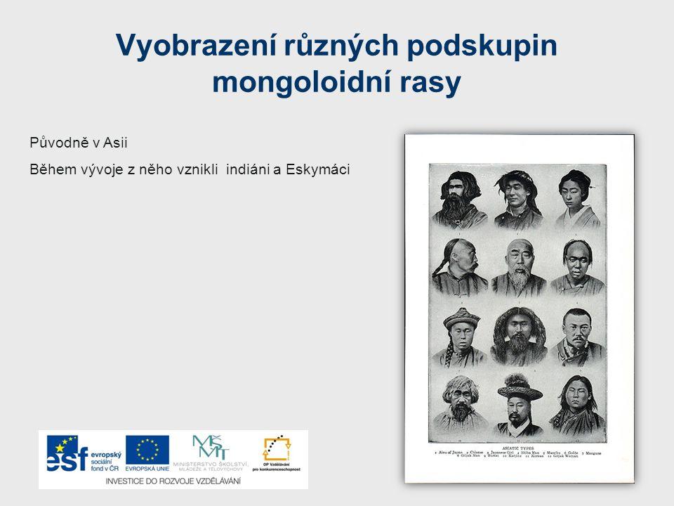 Vyobrazení různých podskupin mongoloidní rasy Původně v Asii Během vývoje z něho vznikli indiáni a Eskymáci