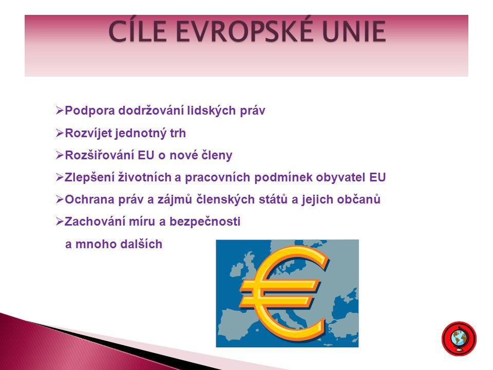 CÍLE EVROPSKÉ UNIE  Podpora dodržování lidských práv  Rozvíjet jednotný trh  Rozšiřování EU o nové členy  Zlepšení životních a pracovních podmínek obyvatel EU  Ochrana práv a zájmů členských států a jejich občanů  Zachování míru a bezpečnosti a mnoho dalších