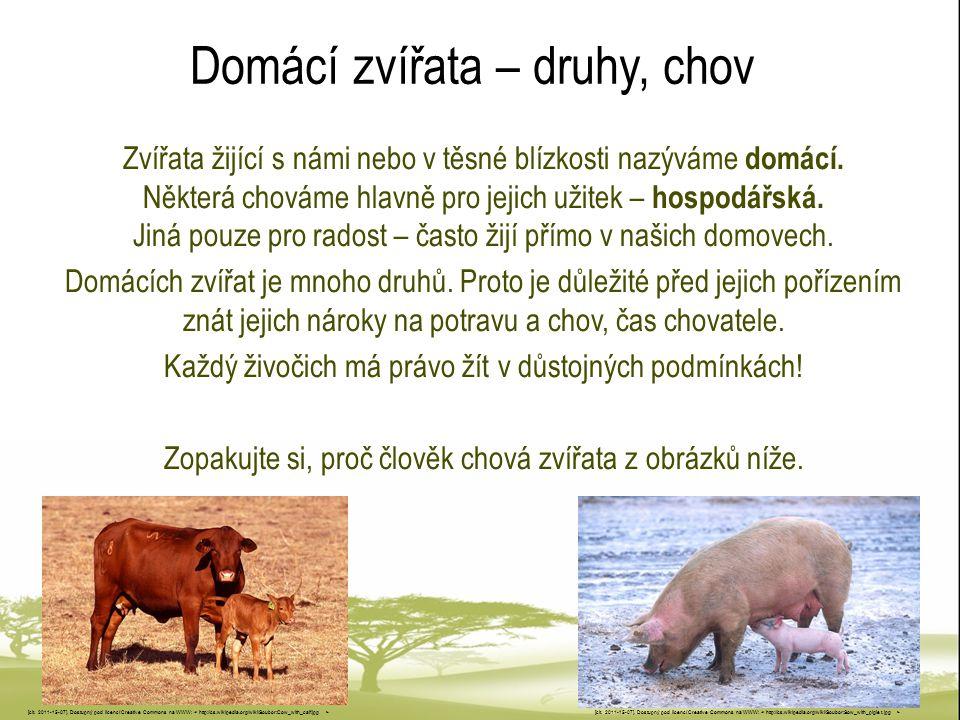 Hospodářská zvířata Člověk chová mnoho zvířat jen pro jejich hospodářský užitek.