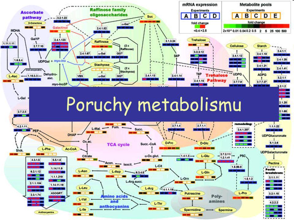Poruchy výživy -OBEZITA Tělesná hmotnost tuková tkáň: muži 10-20% hmotnosti těla ženy 20-30% hmotnosti těla tělesná hmotnost: roste s věkem za ideální hmnotnost je považována ta, při které je nejdelší očekávaná doba života ovlivněno kulturně, geograficky, historicky OBEZITA nadměrné uložení tuků v organismu při součsné hyperplazii a hypertrofii - zvýšenou diferenciacií preadipocytů - zvýšeným ukládáním lipidů do tukových buněk obezita - porucha fyziologické dlouhodobé regulace homeostázy energie kritéria- BMI nad 30, WHR index (waist-hip ratio) měření pasu, kožní řasa, podvodní vážení, měření vodivosti obezita : 1.multifaktoriálního původu 2.následkem onemocnění: endokrinopatie (hypotyreóza, Cushingův syndrom, hypogonadismus) zásobní tuk je uložen v podkožní tukové tkáni, viscerální oblasti, intraorgánově (svaly, játra - ovlivňuje inzulínovou rezistenci) Rizika: kardiovaskulárni, pohybový systém, poruchy fertility, tumory, syndrom polycystických ovárií neomezené ukládání zásobního tuku není bezpečně, proč.