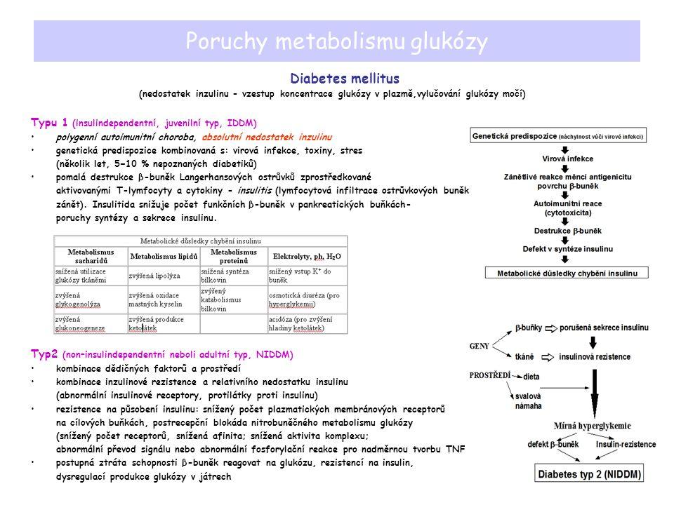 Poruchy metabolismu glukózy Diabetes mellitus (nedostatek inzulinu - vzestup koncentrace glukózy v plazmě,vylučování glukózy močí) Typu 1 (insulindependentní, juvenilní typ, IDDM) polygenní autoimunitní choroba, absolutní nedostatek inzulinu genetická predispozice kombinovaná s: virová infekce, toxiny, stres (několik let, 5−10 % nepoznaných diabetiků) pomalá destrukce β-buněk Langerhansových ostrůvků zprostředkované aktivovanými T-lymfocyty a cytokiny - insulitis (lymfocytová infiltrace ostrůvkových buněk, zánět).
