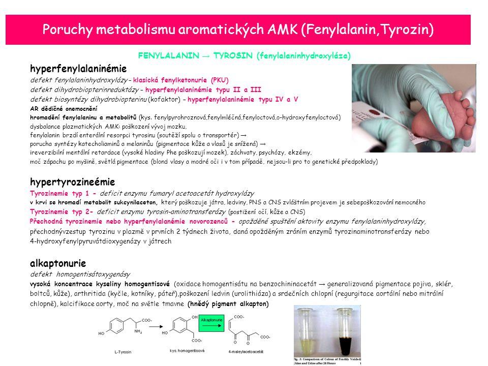 Poruchy metabolismu aromatických AMK (Fenylalanin,Tyrozin) FENYLALANIN → TYROSIN (fenylalaninhydroxyláza) hyperfenylalaninémie defekt fenylalaninhydroxylázy – klasická fenylketonurie (PKU) defekt dihydrobiopterinreduktázy – hyperfenylalaninémie typu II a III defekt biosyntézy dihydrobiopterinu (kofaktor) – hyperfenylalaninémie typu IV a V AR dědičné onemocnění hromadění fenylalaninu a metabolitů (kys.
