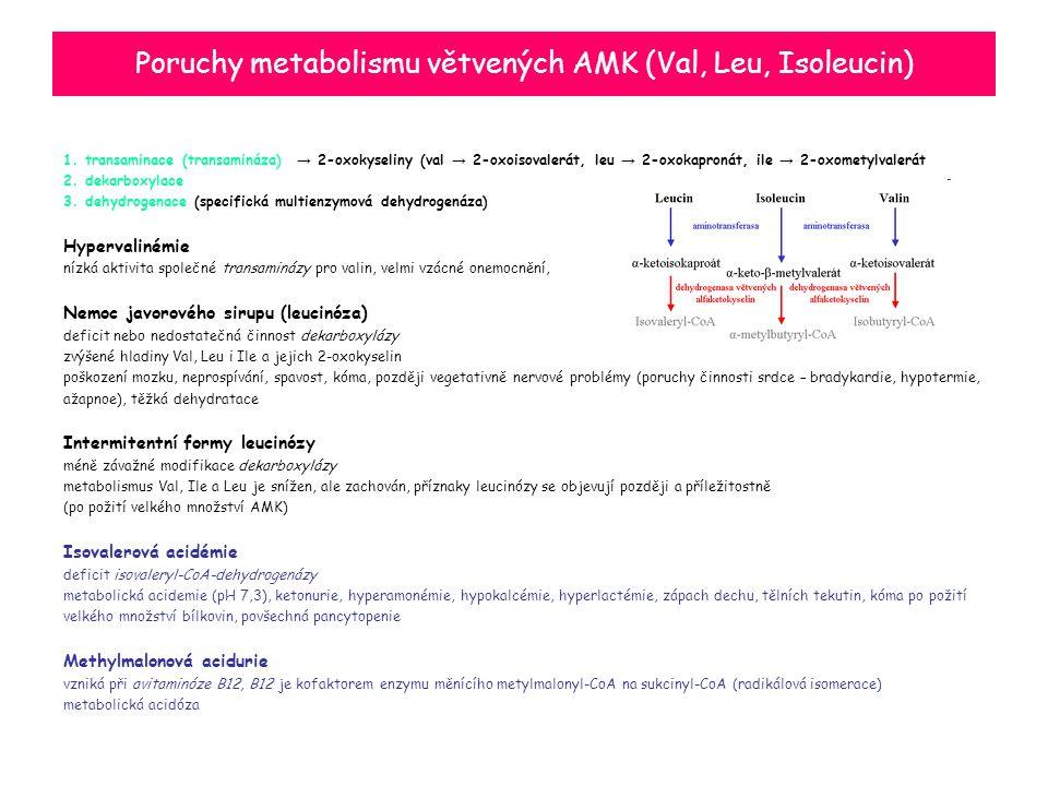 Poruchy metabolismu větvených AMK (Val, Leu, Isoleucin) 1. transaminace (transamináza) → 2-oxokyseliny (val → 2-oxoisovalerát, leu → 2-oxokapronát, il