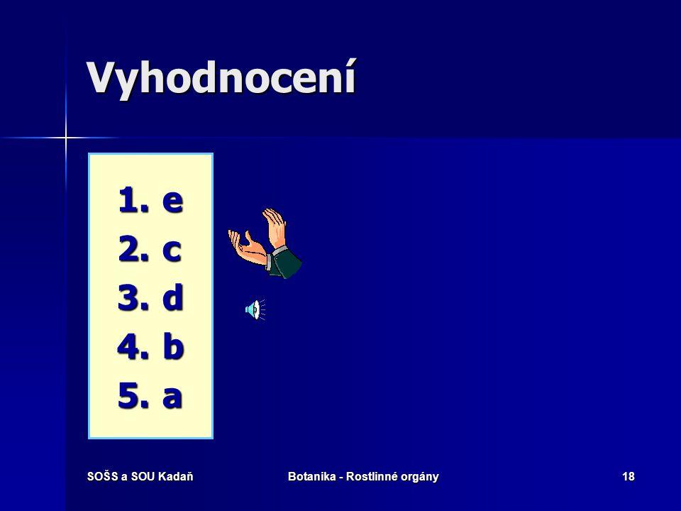 SOŠS a SOU KadaňBotanika - Rostlinné orgány17 Které pojmy spolu souvisí? 1. 1.Rhizodermis 2. 2.Radix 3. 3.Kalyptra 4. 4.Radikula 5. 5.Meristém a) a) D