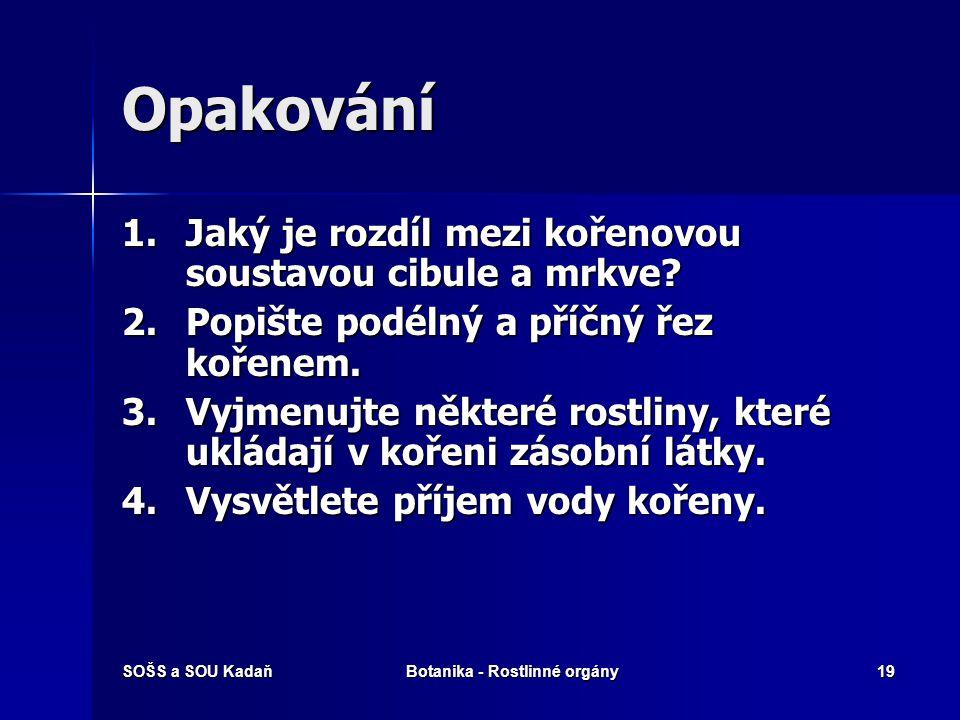 SOŠS a SOU KadaňBotanika - Rostlinné orgány18 Vyhodnocení 1.e 2.c 3.d 4.b 5.a
