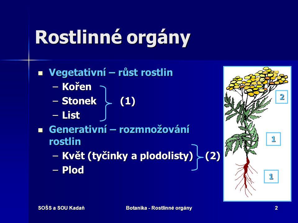 SOŠS a SOU KadaňBotanika - Rostlinné orgány2 Rostlinné orgány Vegetativní – růst rostlin Vegetativní – růst rostlin –Kořen –Stonek (1) –List Generativní – rozmnožování rostlin Generativní – rozmnožování rostlin –Květ (tyčinky a plodolisty) (2) –Plod 1 1 2