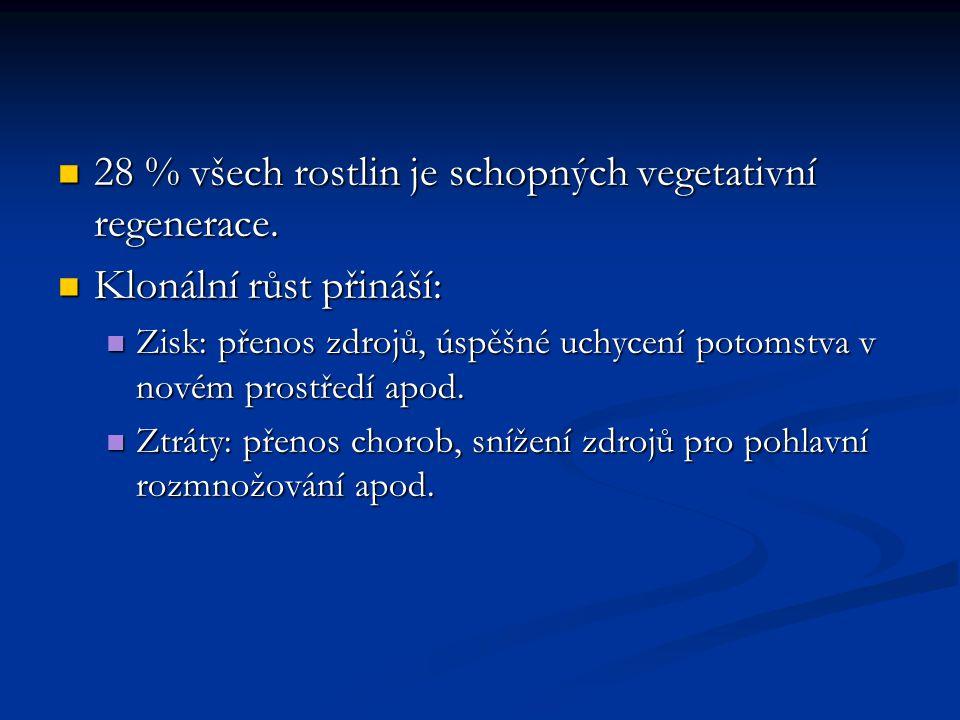 28 % všech rostlin je schopných vegetativní regenerace. 28 % všech rostlin je schopných vegetativní regenerace. Klonální růst přináší: Klonální růst p