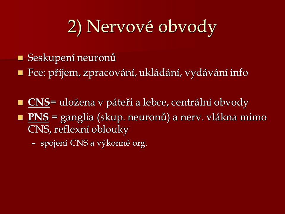 2) Nervové obvody Seskupení neuronů Seskupení neuronů Fce: příjem, zpracování, ukládání, vydávání info Fce: příjem, zpracování, ukládání, vydávání inf