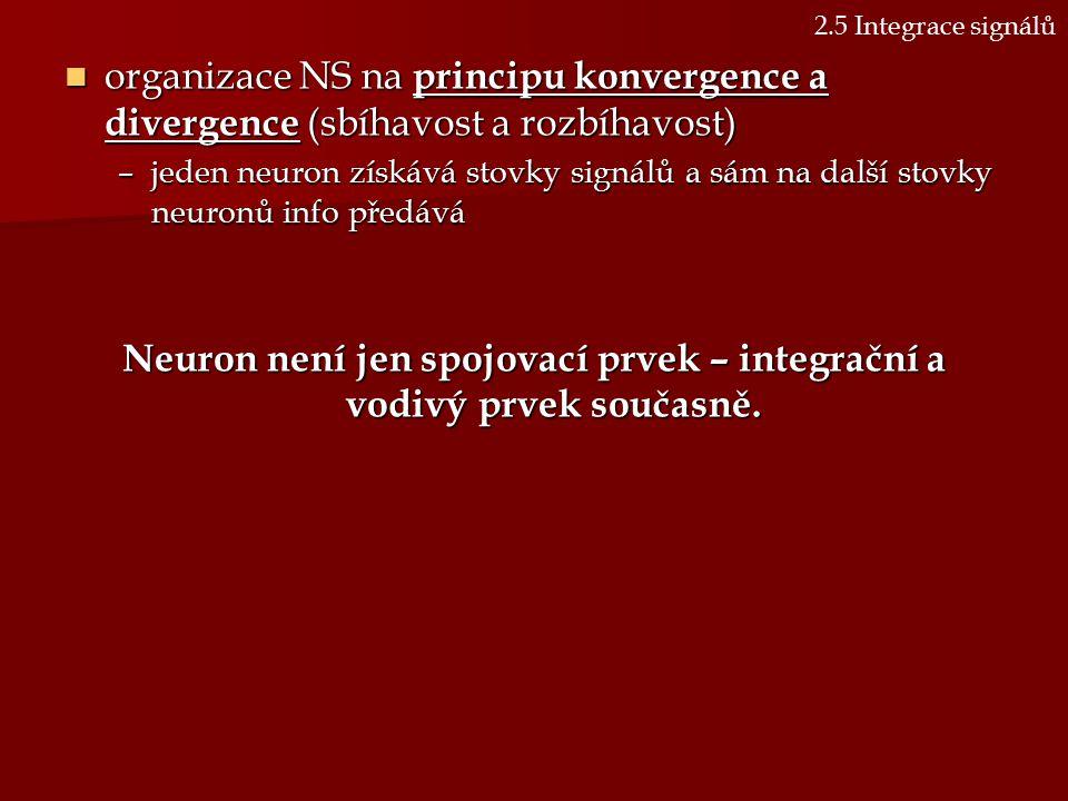organizace NS na principu konvergence a divergence (sbíhavost a rozbíhavost) organizace NS na principu konvergence a divergence (sbíhavost a rozbíhavo