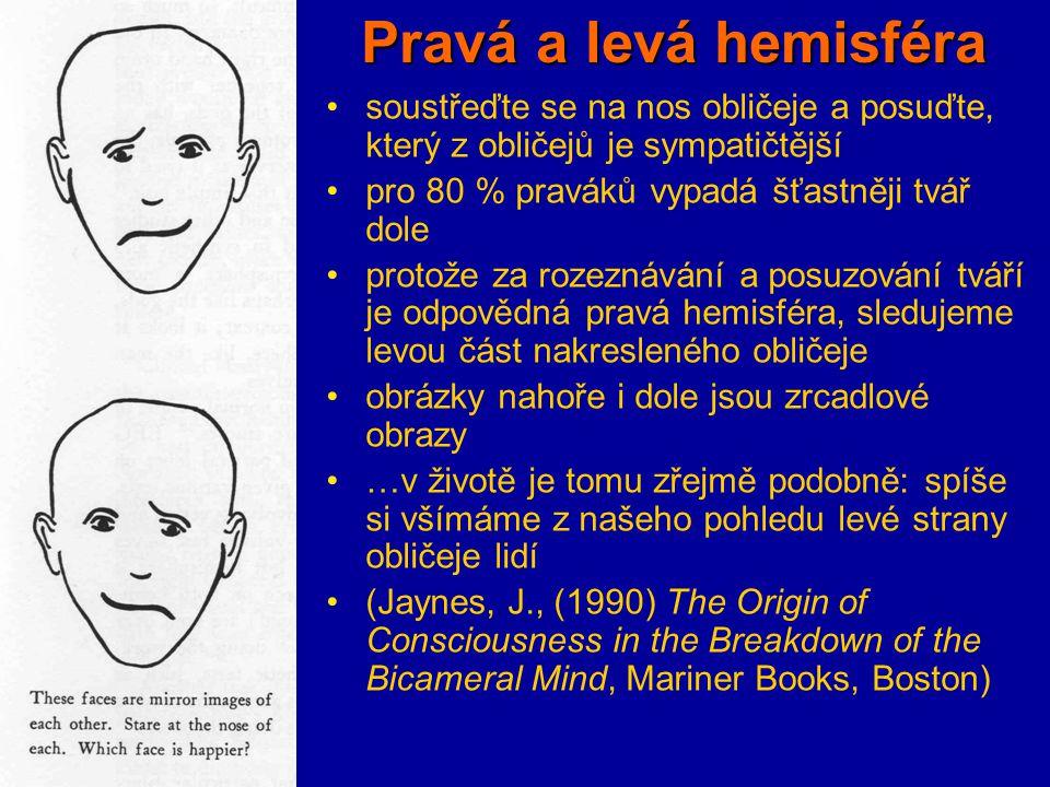 Pravá a levá hemisféra soustřeďte se na nos obličeje a posuďte, který z obličejů je sympatičtější pro 80 % praváků vypadá šťastněji tvář dole protože