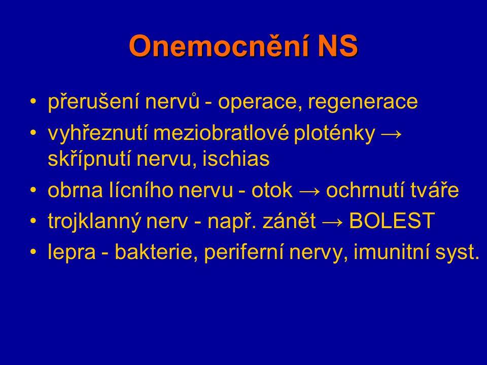 Onemocnění NS přerušení nervů - operace, regenerace vyhřeznutí meziobratlové ploténky → skřípnutí nervu, ischias obrna lícního nervu - otok → ochrnutí