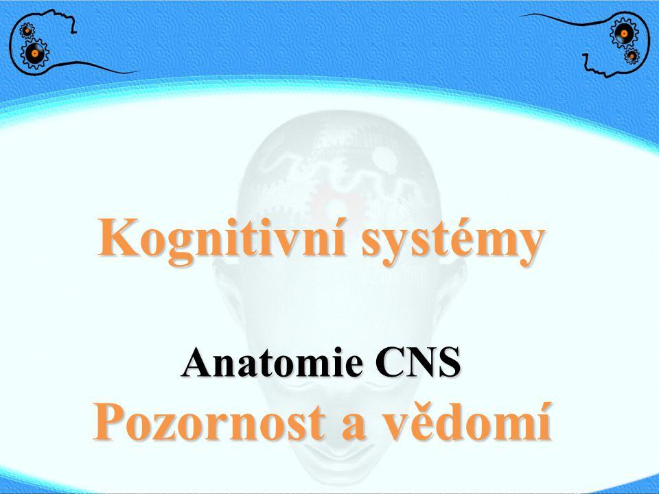 Kognitivní systémy Anatomie CNS Pozornost a vědomí