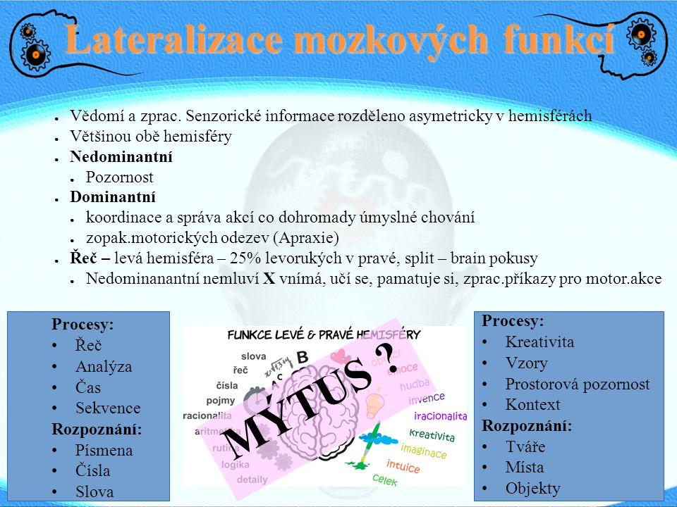Lateralizace mozkových funkcí ● Vědomí a zprac. Senzorické informace rozděleno asymetricky v hemisférách ● Většinou obě hemisféry ● Nedominantní ● Poz