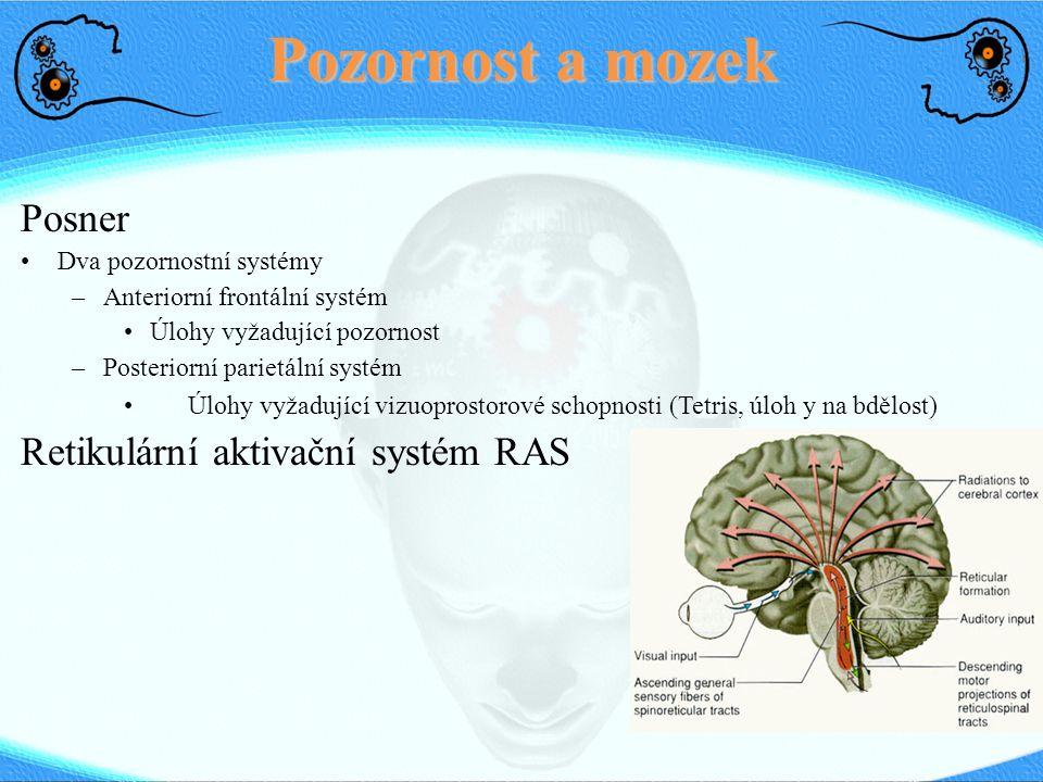 Pozornost a mozek Posner Dva pozornostní systémy –Anteriorní frontální systém Úlohy vyžadující pozornost –Posteriorní parietální systém Úlohy vyžadují