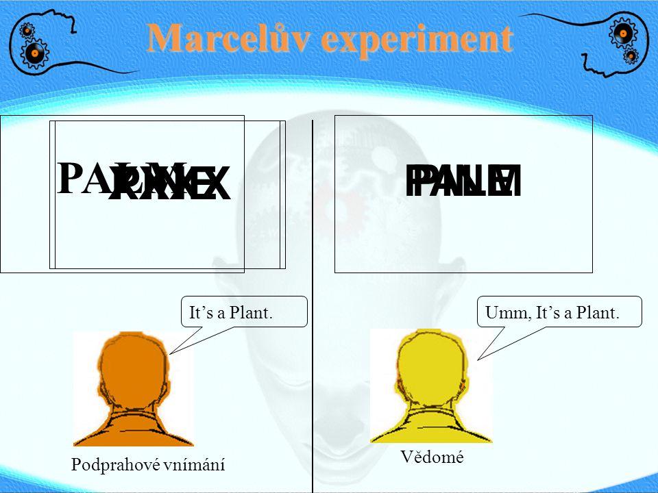Marcelův experiment PALM XXXXPINE It's a Plant.Umm, It's a Plant. Podprahové vnímání Vědomé