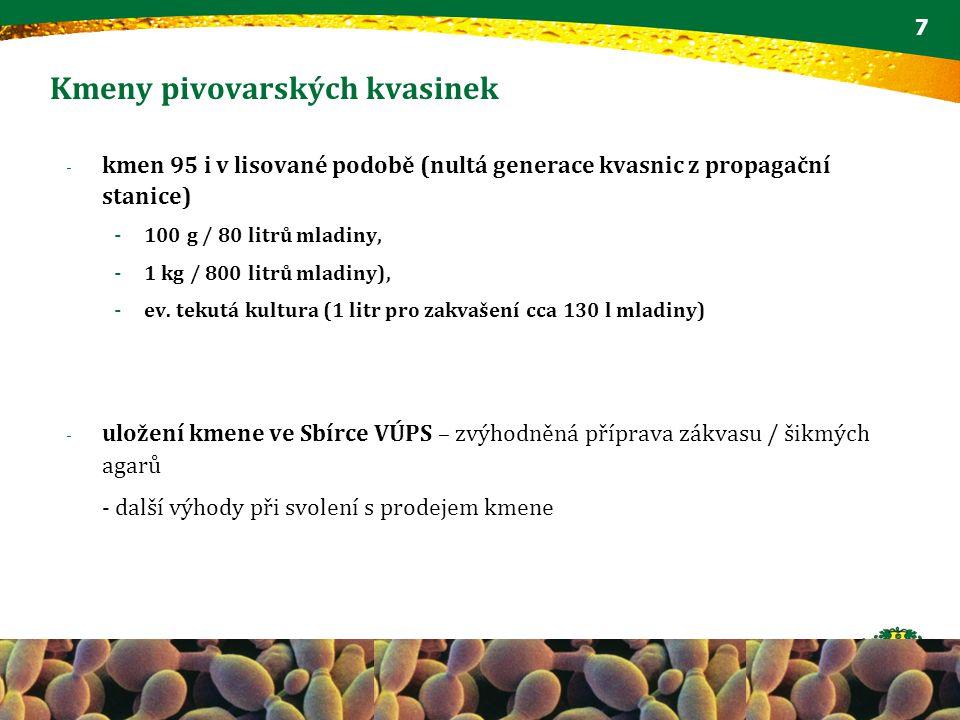 Kmeny pivovarských kvasinek 7 - kmen 95 i v lisované podobě (nultá generace kvasnic z propagační stanice) - 100 g / 80 litrů mladiny, - 1 kg / 800 lit