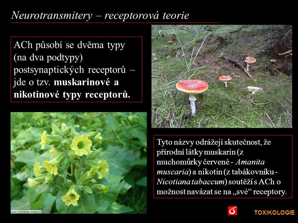 TOXIKOLOGIE VŠCHT Praha Neurotransmitery – receptorová teorie Tyto názvy odrážejí skutečnost, že přírodní látky muskarin (z muchomůrky červené - Amani