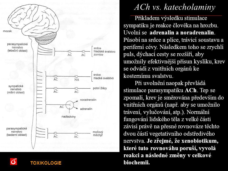 TOXIKOLOGIE VŠCHT Praha ACh vs. katecholaminy Příkladem výsledku stimulace sympatiku je reakce člověka na hrozbu. Uvolní se adrenalin a noradrenalin.