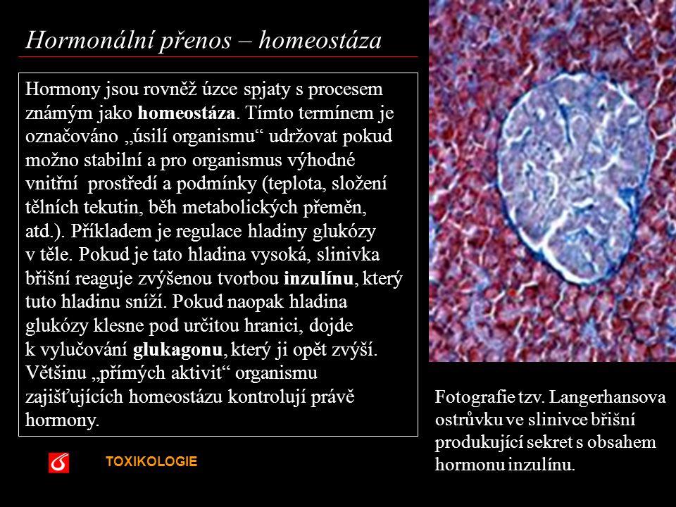 """TOXIKOLOGIE VŠCHT Praha Hormony jsou rovněž úzce spjaty s procesem známým jako homeostáza. Tímto termínem je označováno """"úsilí organismu"""" udržovat pok"""